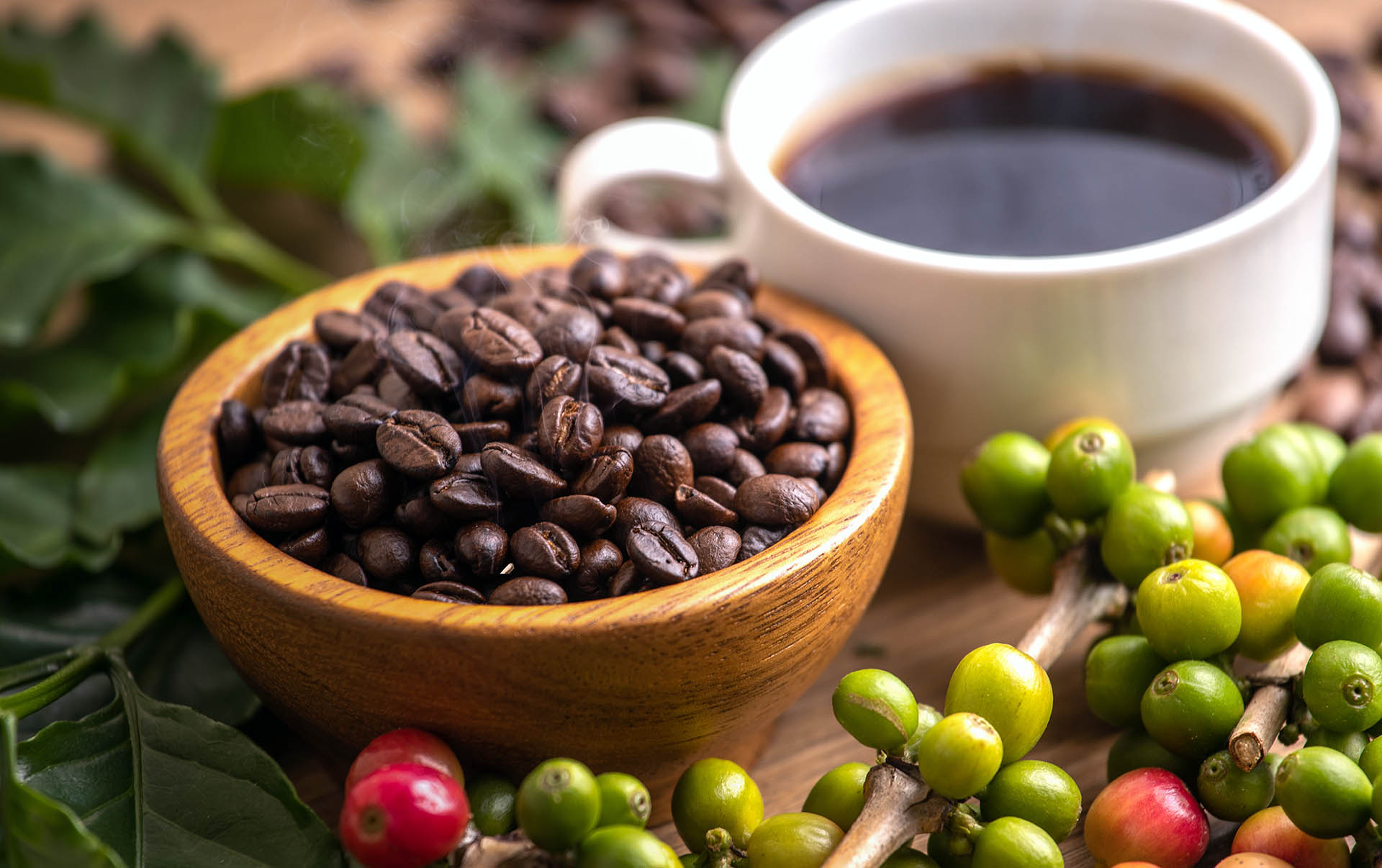 Cup Of Coffee Beans With Smoke Qud84Lb Kuban®